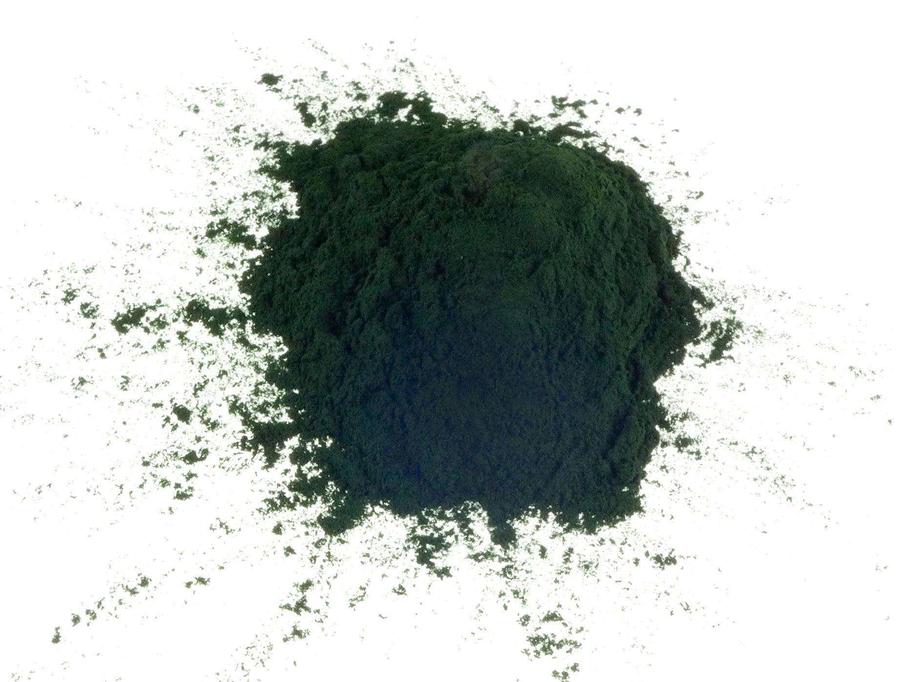 SPIRULINA powder - choose quantity - human food grade certified - bulk discount